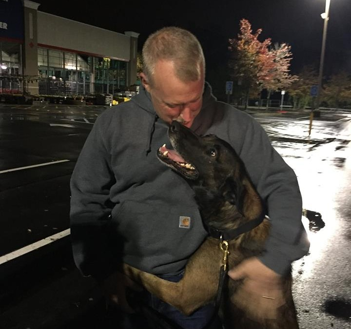 K9 Chip Returns Home