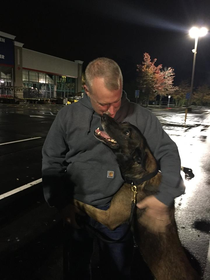 k9 Chip and Gil